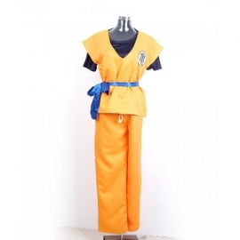 Dragon Ball Z - Son Goku costume